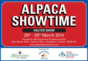 Alpaca Showtime Halter Show